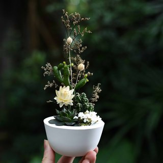Participate in the Third Floor [Forest] Cactus & Cement Basin | Planting & Drying Flowers