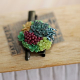 Pocket fleshy hair accessories clip pin Miniature Succulent Plants Pin