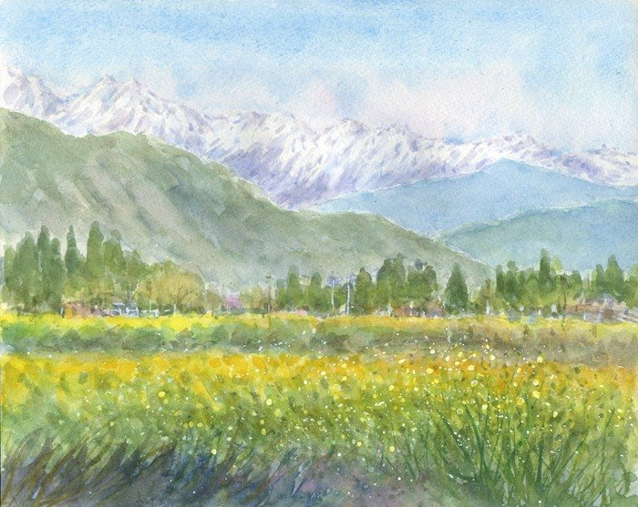 Watercolor painting Alps and rape blossoms