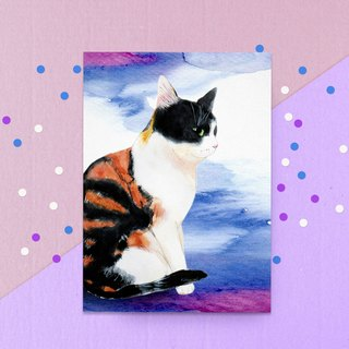 Thinking cat postcard