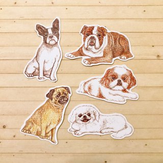 Color pencils hand drawn flat face dog waterproof sticker set 5 into
