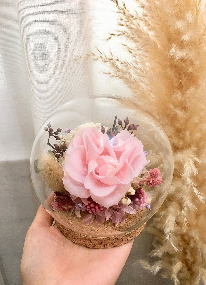 Glass flower cover [good mood today] dried flower glass cover dried flower gift birthday gift