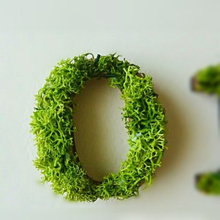 "Wooden numbers objects (Moss) 5cm ""0 zero"" × 1 point"