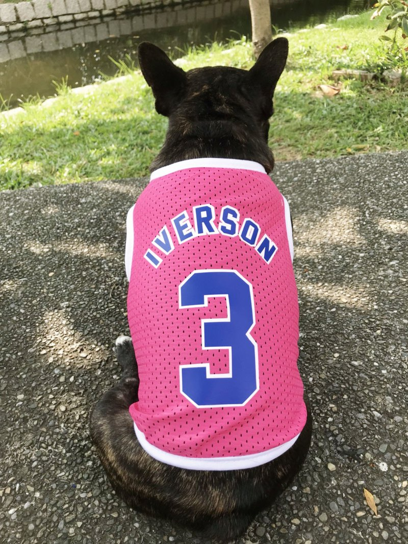 Two-tone pink jersey custom name NEW