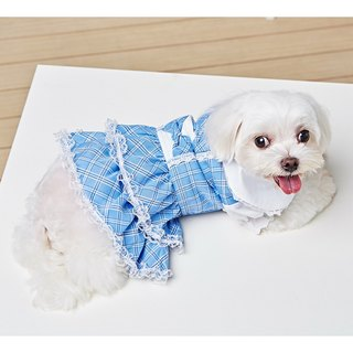 Pet clothes college style dress