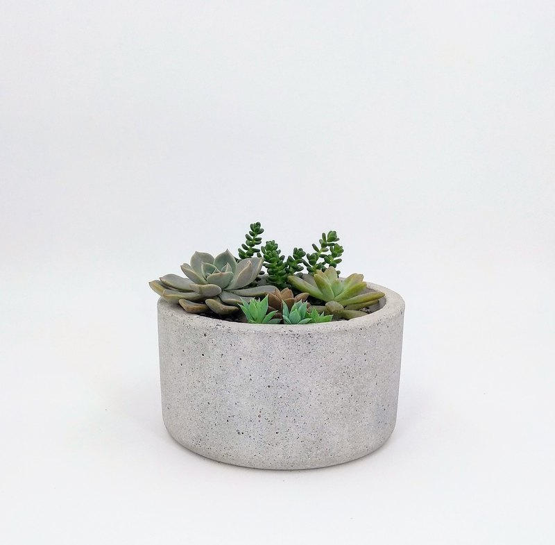 [Deep round pot] cement flower / cement pot plant / cement planting (without plants)