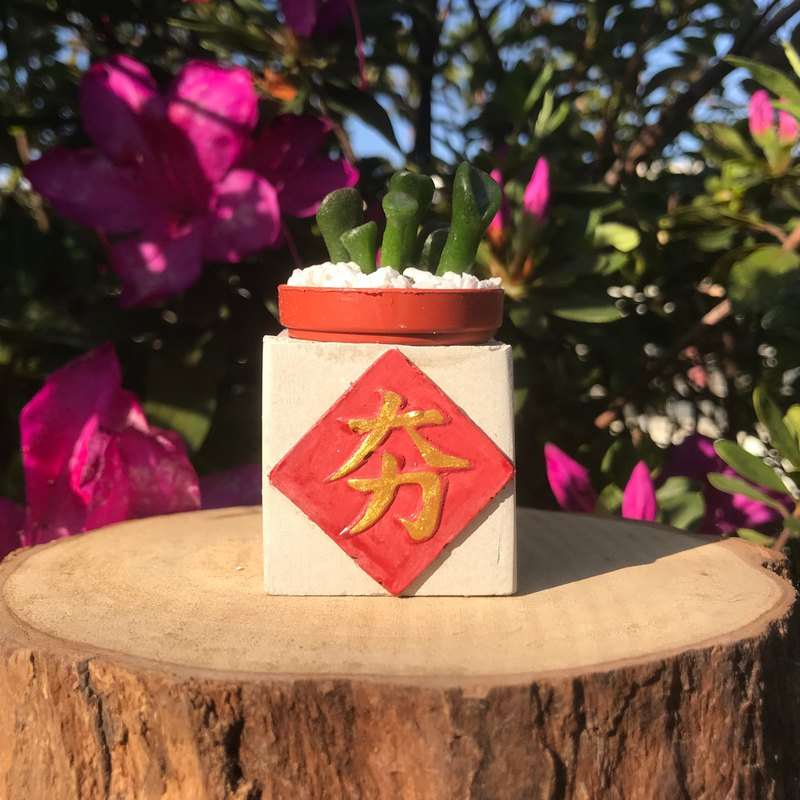 夯New Year magnet potted