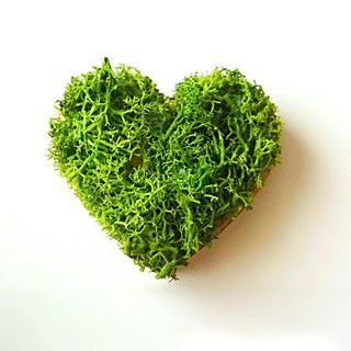 "Wooden alphabet objects (Moss) 5cm ""♥ Heart"" × 1 point"
