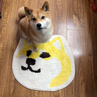 2018 Barnyard New Products Big Face Shiba Indicating Anti-Slip Mat 03 Wink Side