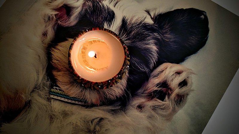 新年芯希望訊息蠟燭/來自宇宙的小秘密/小蒼蘭/祖馬龍香氛/商業可客製logo