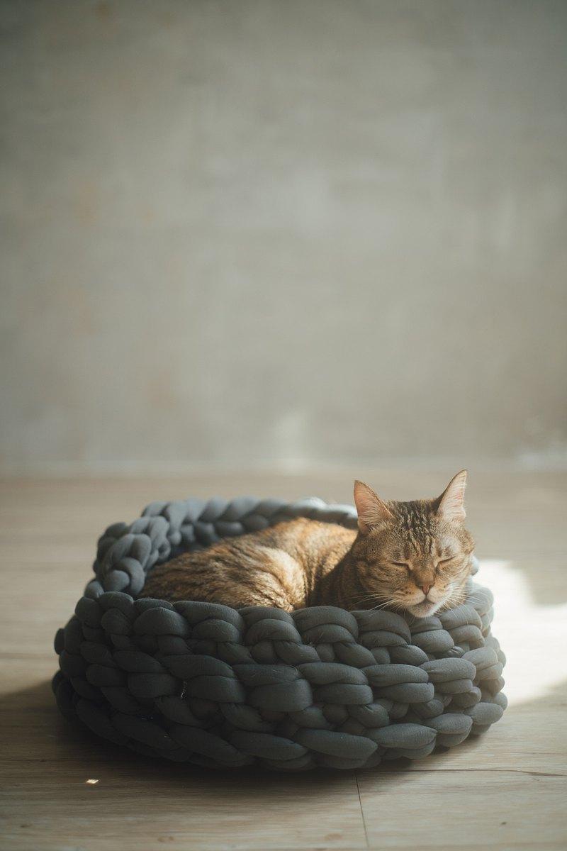 【六月延長加開課程】手作寵物貓窩/狗窩