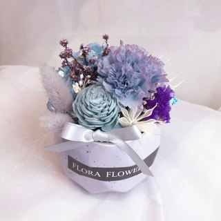 Flora flower Collection Carnation Eternal Life Small Potted Gift Box/ Potted Dry Bouquet Mother's Day Bouquet Birthday Gift Decoration Not Decay Mother's Day Flower Gift Box