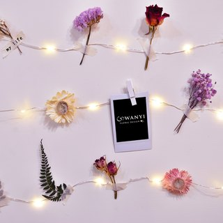 Dry flower DIY flower wall LED small star light group USB power supply line room layout Tanabata marriage proposal