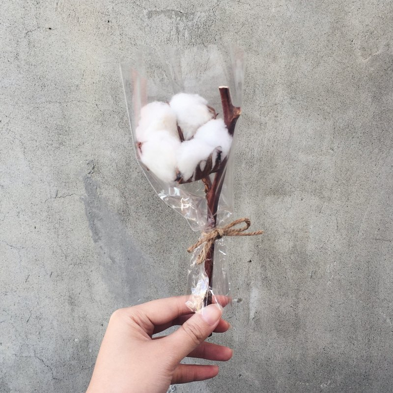 Dry cotton flower