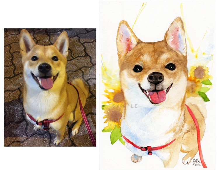 "Single watercolor pet portraits to order 5 ""X7"" (without box)"