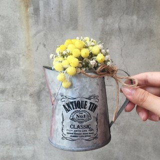 Helichrysum dried bouquet plant waterer