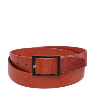 ASSERTION Belt _Tan / Camel