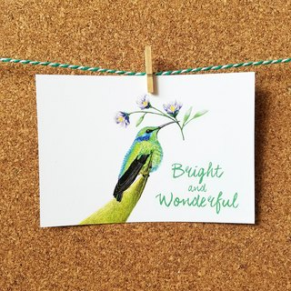 Postcard - Hummingbird