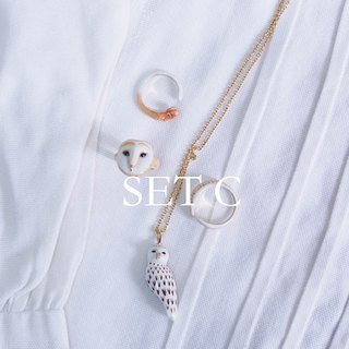 GoodyBag -Set C- Owl Trio Ring + Owl Necklace