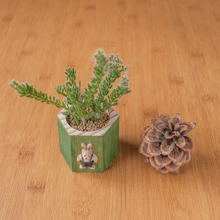 Fleshy beehive tub - fir green rabbit] wooden storage box meaty flower / without planting admission
