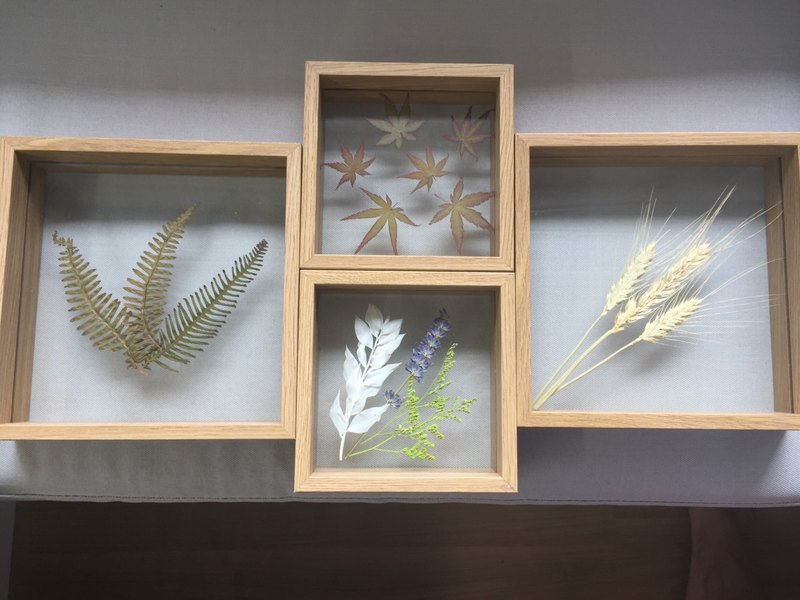 [Pure Natural] drying plant small frame glass Videos embossed fern flower ginkgo maple wheat Clover gifts art picture frame drying plant