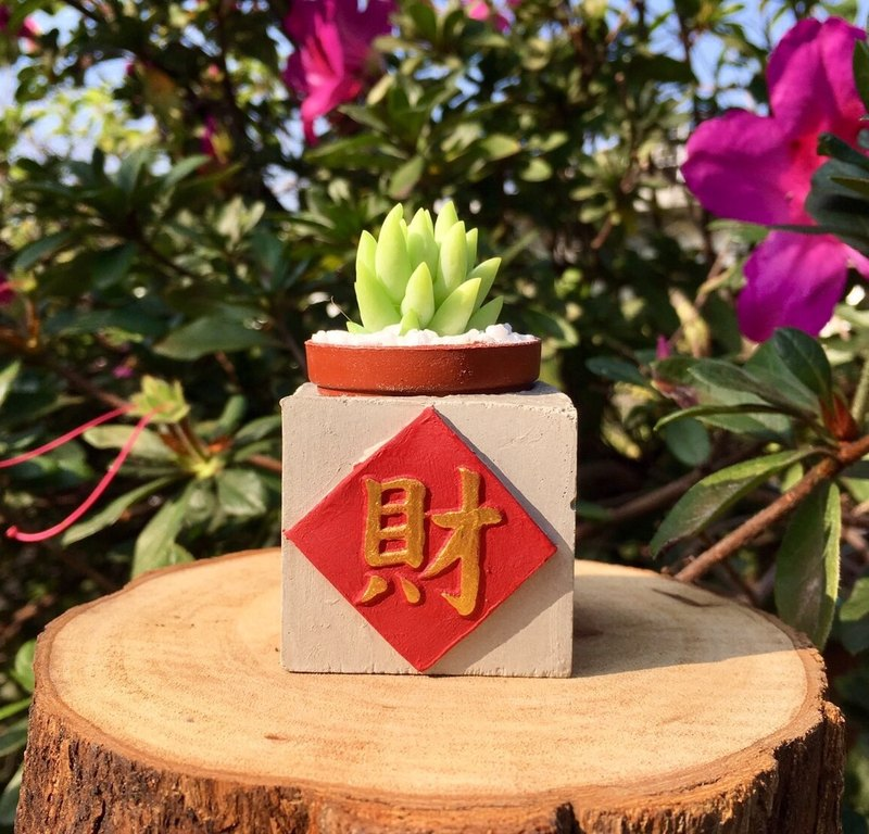 Choi red pass !! New Year magnet potted plants