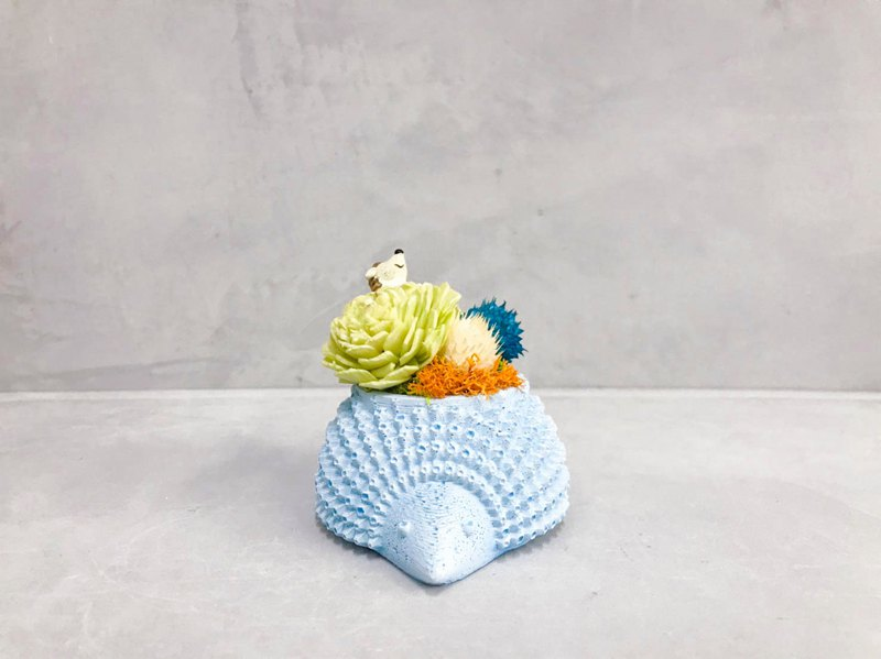 Hedgehog Pot Dry Flower │ Limited Edition