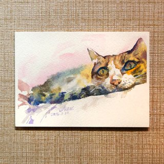 Watercolor painting lazy lying cat