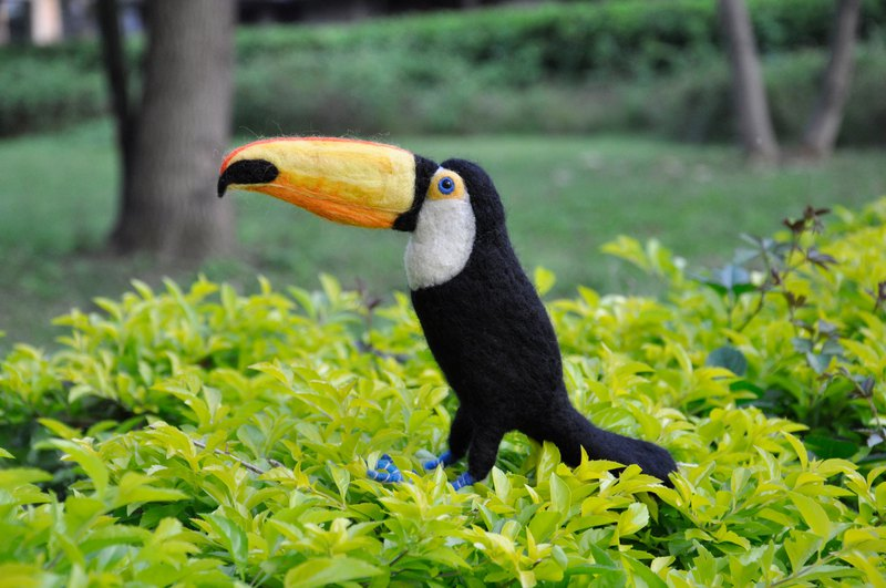 Judys wool Felt - texture creation animal series - toucan