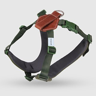 SPUTNIK chest strap - green (L)