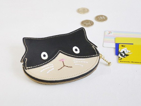 Black and white cat with coin, card and bill