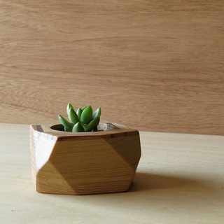 HO MOOD wood fight series - geometric potted plants