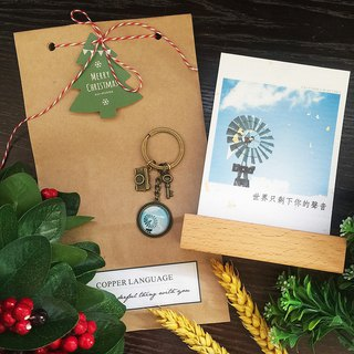 Small things key ring - guest gift group with Christmas tree tag