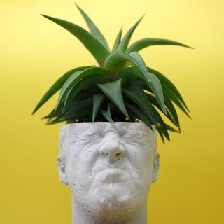 Cement pot succulent - man