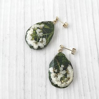 Moss and pressed flower drops earrings / earrings