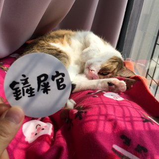 Shovel v v vs I am a cat slave waterproof sticker Waterproof tank stickers