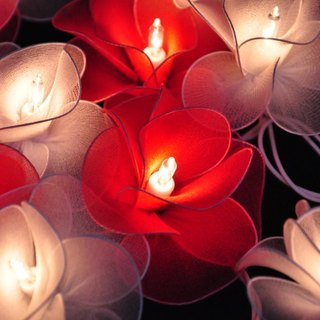 20 White & Red Flower String Lights for Home Decoration,Wedding,Party,Bedroom,Patio and Decoration