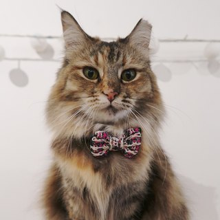 Alice Tweed Bowtie for Pets