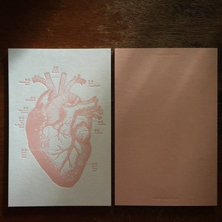 Follow Your Heart Heart Map Postcard / White Card Hot Pink