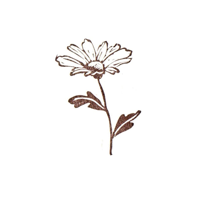 Daisy / Flower / hand carved rubber stamp