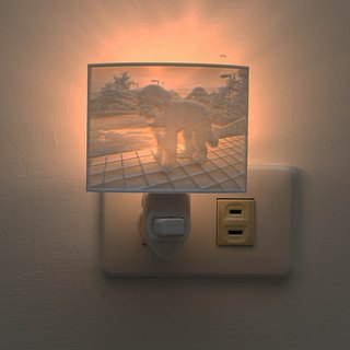 3D photo wall lamp _ pet articles _ custom gift _ Valentine's Day gift _ wedding small things _ exchange gifts