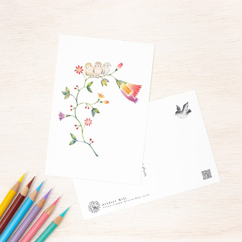 "4 pieces set. Like a picture book. Post card ""Three birds and flowers"" PC - 117"