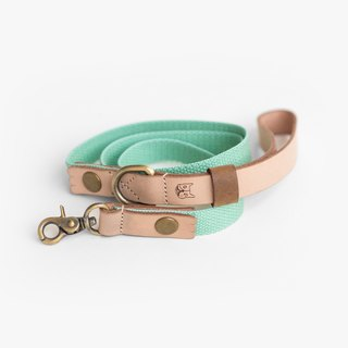 Natural Leather Mint Green Leash (M) | For Dogs