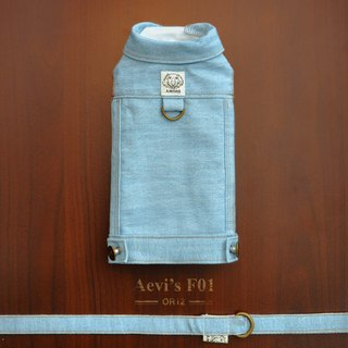 Aevi's F01 Among Chest Trunk