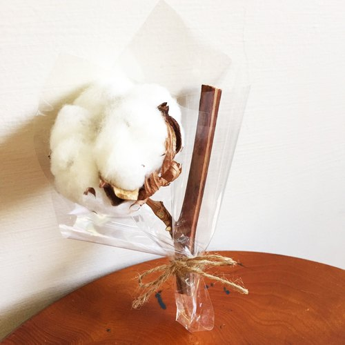 Cotton small bouquet of dried cotton (single-entry)