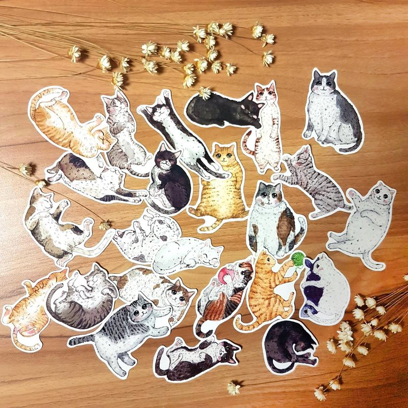 Cat stickers with their own | optional 5 models