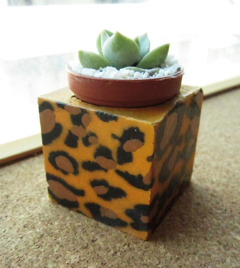 Leopard ~! Magnet potted succulents