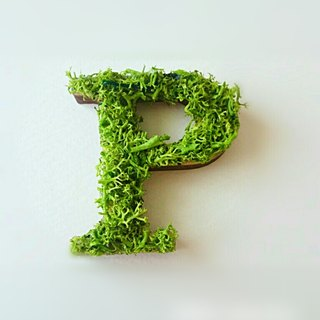 "Wooden alphabet objects (Moss) 5cm ""P"" × 1 point"