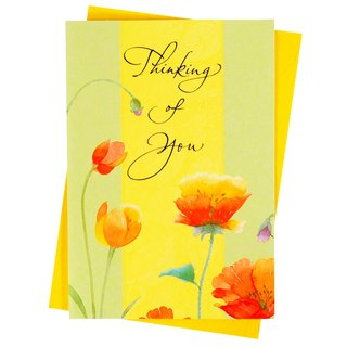 Warmth and Good Wishes [Hallmark-Card Relief Consolation]
