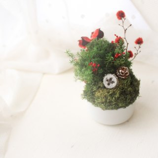 Fairy tale green island mini table flower, Christmas dry flower ceremony